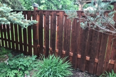 Fence restained